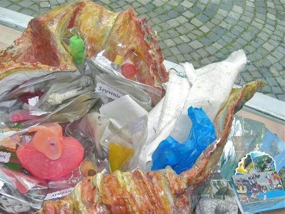 Muschelobjekt & Souvenirs
